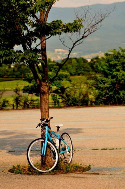 2013夏 夏色自転車