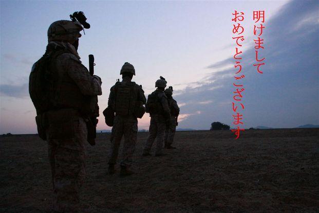 IMG_8528_.jpg