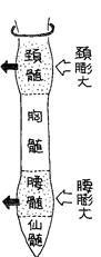 sekizui111