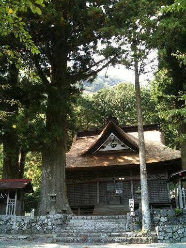 精進諏訪神社と大杉