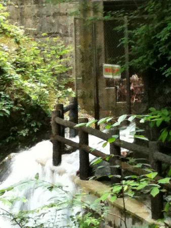 竜化の滝断念