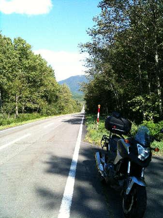 高原の道ウリマク