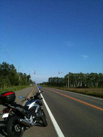 直線17km