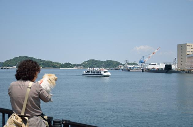 ⑥横須賀港