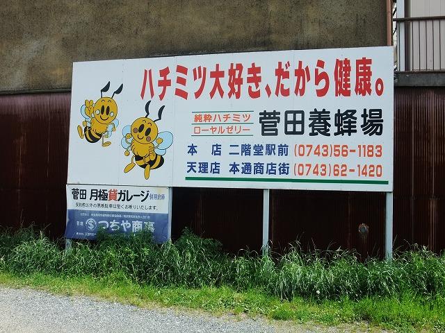 2011_05260263.jpg