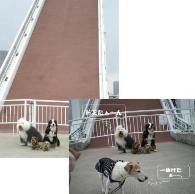 跳ね橋前の集合写真1