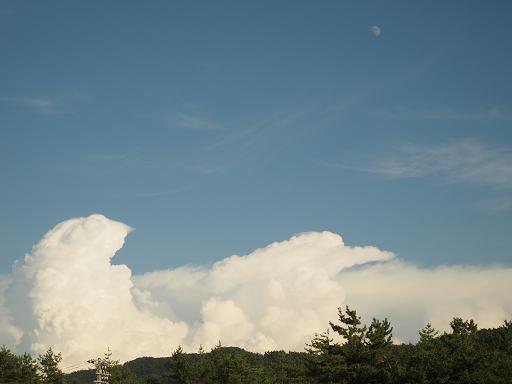 米山SAからの空