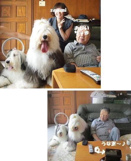 おじいちゃまとさゆ