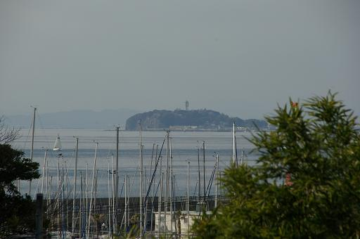 120114-37enoshima.jpg