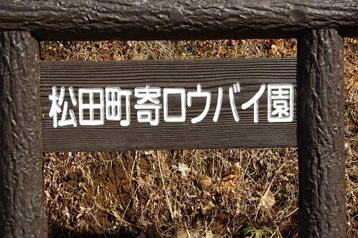 120218-22roubaien.jpg