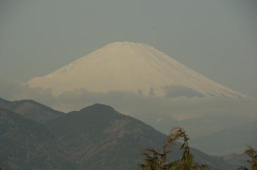 120320-12fuji.jpg