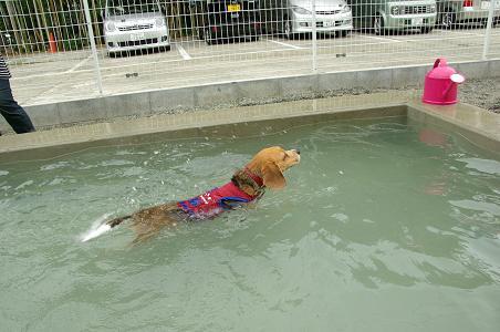 100808-28chura swim2