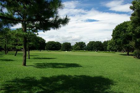 100811-09up park