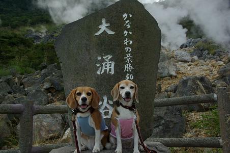 100904-14characooky in kanagawakeishouchi50sen
