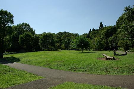 100919-06oyama view
