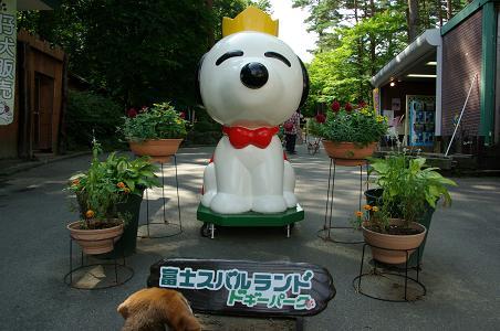 100920-01fuji doggy park