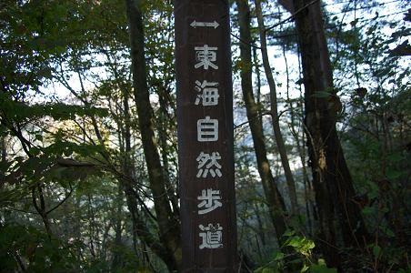 101106-03toukai shizenhodou