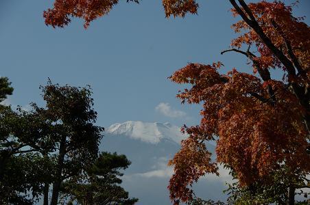 101106-32fuji view8