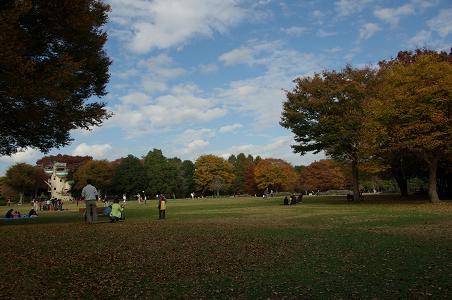 101121-29sagamihara park