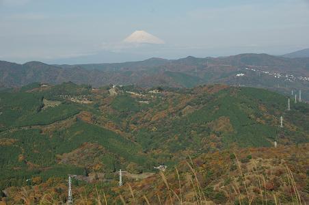 101124C12fuji view