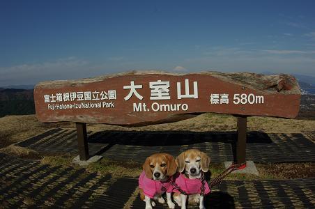 101124C13characooky on omuroyama