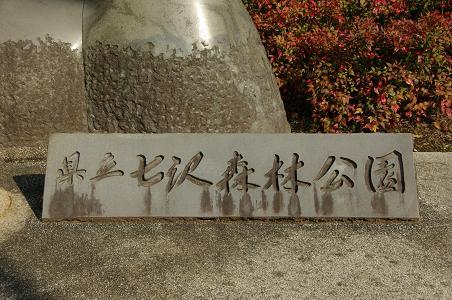 101127-01kenritsu nanasawashinrin park