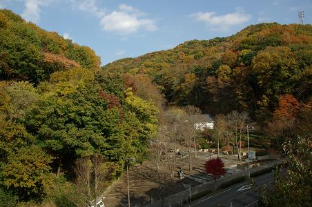 101127-04nanasawa paek view