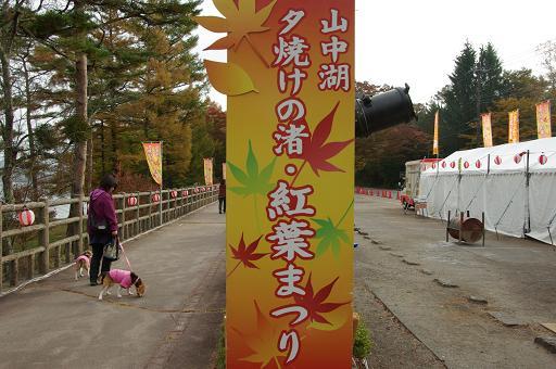 111103-07yuyakenonagisa momijimatsuri