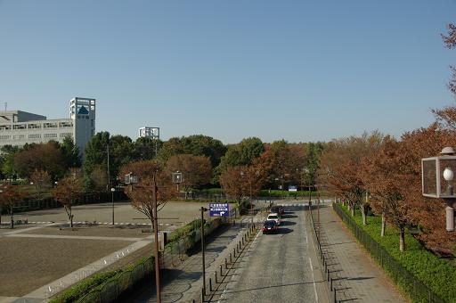 111123-02sagamihara park view01