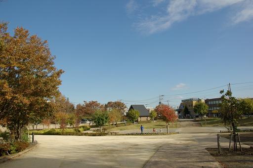 111126-02yatoyama park view