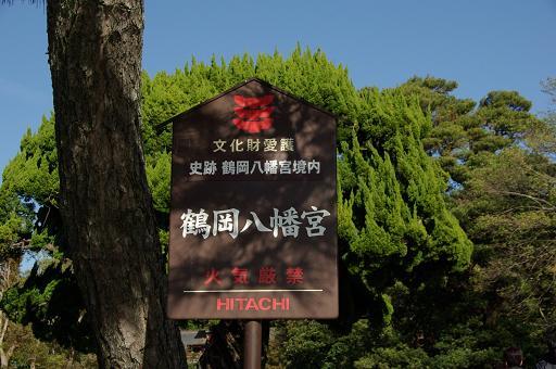111210-18tsurugaoka hachimangu01