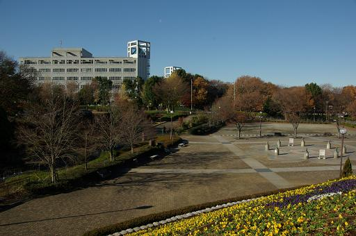 111217-04park view