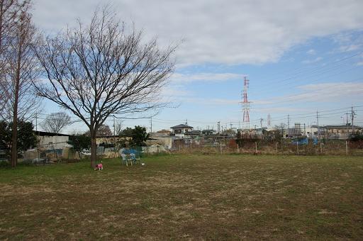 111231-05hirukawa view
