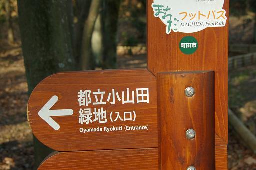 120109-01toritsu oyamada  ryokuchi