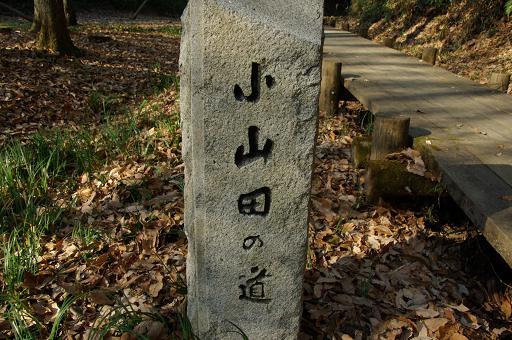 120109-06oyamada no michi