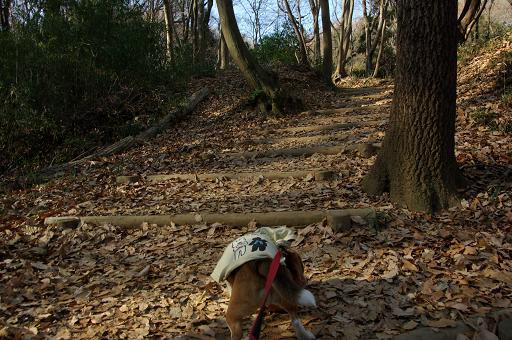 120109-08chara walk on yuhodou02