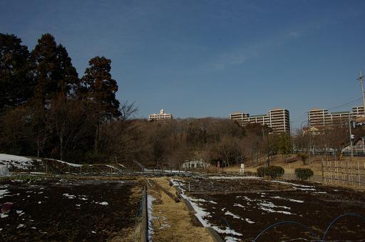 120128-15oyama view