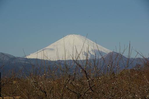 120218-04Mt Fuji