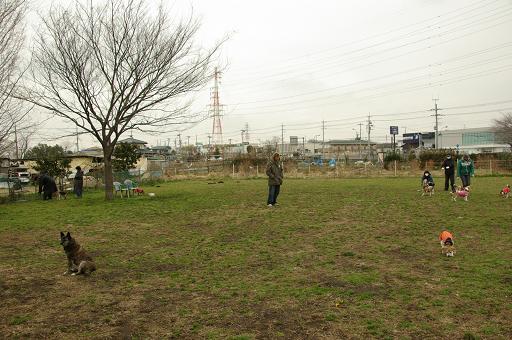 120304hirukawa view