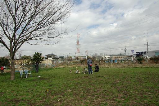 120311-22horukawa view
