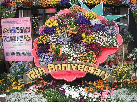120317P-10 flower02