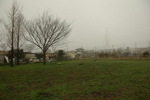 120318-02hirukawa view