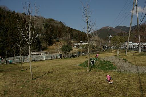 120320-24yadoriki view