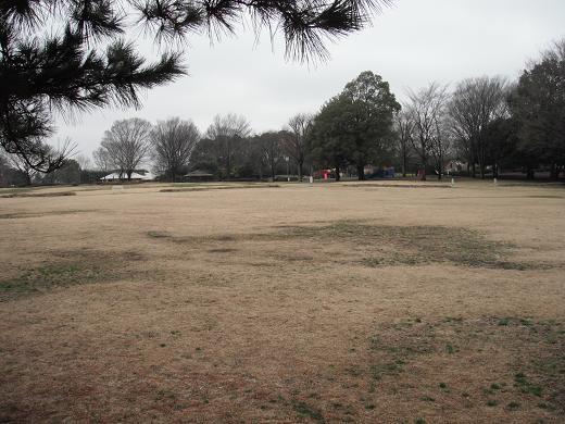 120324-11shibafuhiroba view