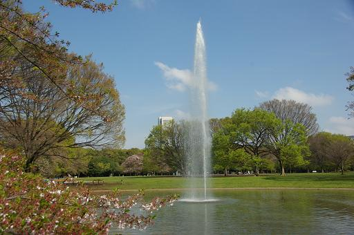 120415-05yoyogi park view