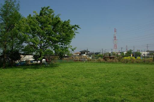 120429-01hirukawa view