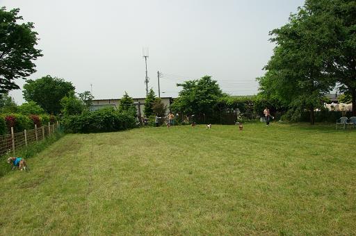 120520-12hirukawa view