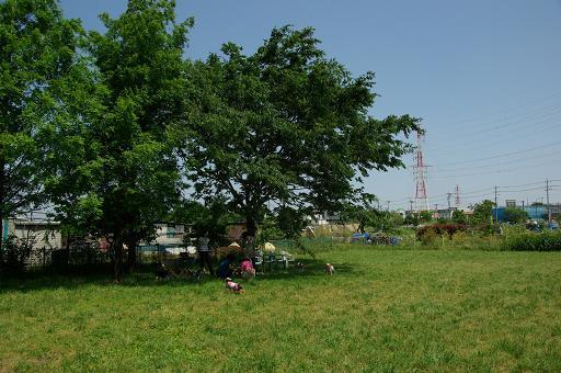 120527-19hirukawa view
