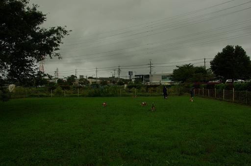 120708-20hirukawa view
