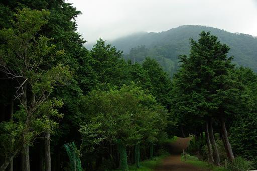 120709-28ohyama view02